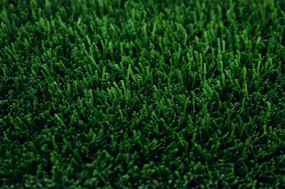 Close up of Envylawn's Fescue Rec Artificial Grass