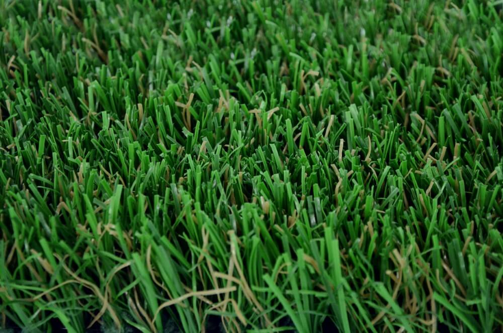Close up of Envylawn's St. Augustine Artificial Grass