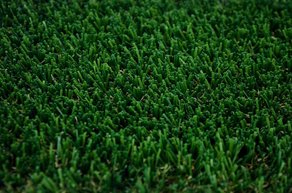 Close up of Envylawn's Augusta Artificial Grass